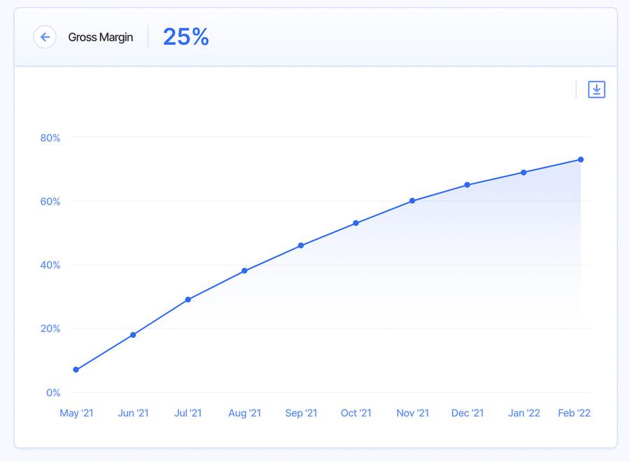gross margin - financial metrics